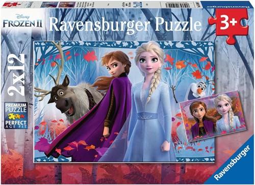 Frozen 2 - Reis naar het Onbekende Puzzel (2x12 stukjes)