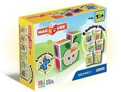 MagiCube Fruit - 4 delig