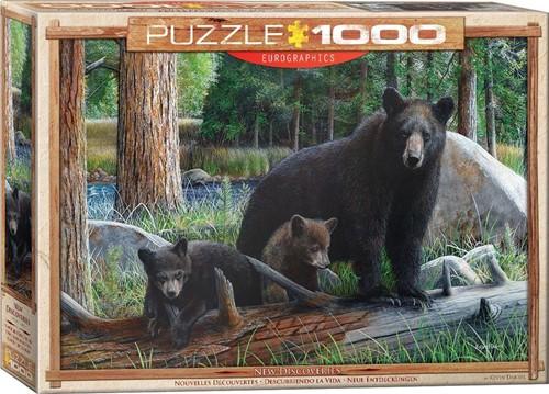 New Discoveries Puzzel (1000 stukjes)