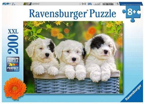 Schattige Puppies Puzzel (200 XXL stukjes)