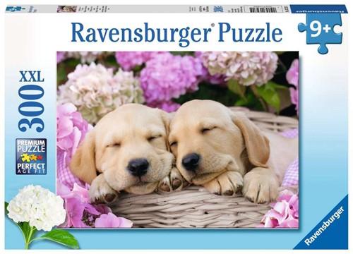 Schattige Hondjes in Mand Puzzel (300 XXL stukjes)