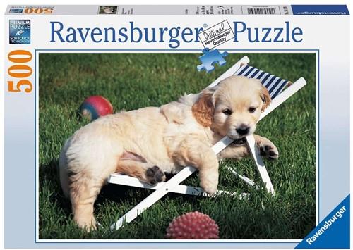 Golden Retriever Puppy Puzzel (500 stukjes)