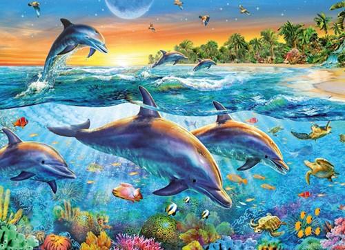 Dolfijnenbaai Puzzel-2