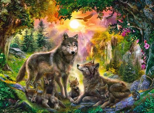 Wolvenfamilie in het Zonlicht (500 stukjes)