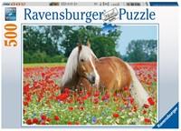 Paard Tussen De Klaprozen Puzzel (500 stukjes)