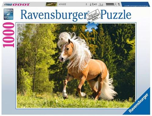 Vrolijk Paard Puzzel (1000 stukjes)