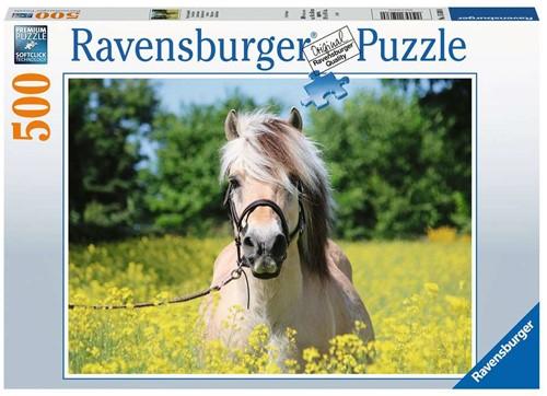Paard Tussen De Bloemen Puzzel (500 stukjes)