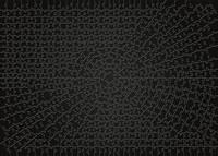 Krypt Black Puzzel (736 stukjes)-2