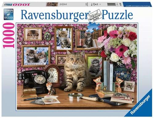 Mijn Katjes Puzzel (1000 stukjes)