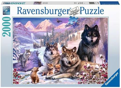 Wolven in de Sneeuw Puzzel (2000 stukjes)