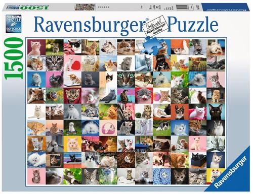 99 Katten Puzzel (1500 stukjes)