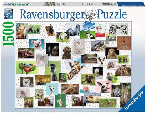 Funny Animals Puzzel (1500 stukjes)