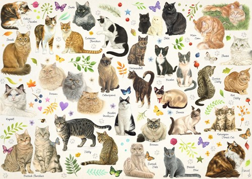 Katten Poster Puzzel (1000 stukjes)-2