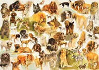 Honden Poster Puzzel (1000 stukjes)
