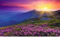 Bergweide in het Morgenrood Puzzel (1000 stukjes)-2
