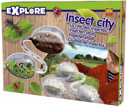 Insecten Stad