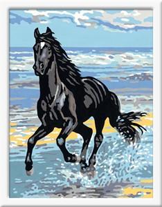 Schilderen op nummer: paard in de branding