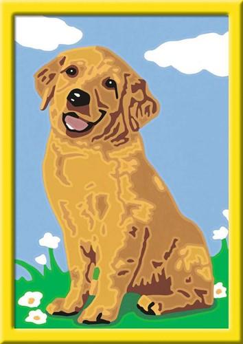 Schilderen Op Nummer - Lieve Puppy