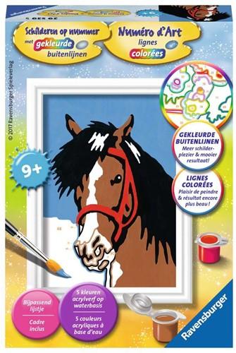 Schilderen op Nummer - Paardenblik