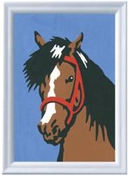 Schilderen Op Nummer Paardenblik