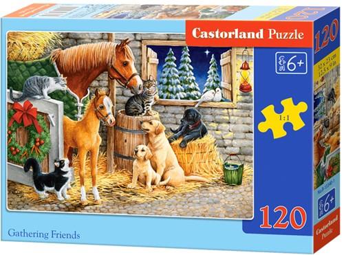 Gathering friends Puzzel (120 stukjes)