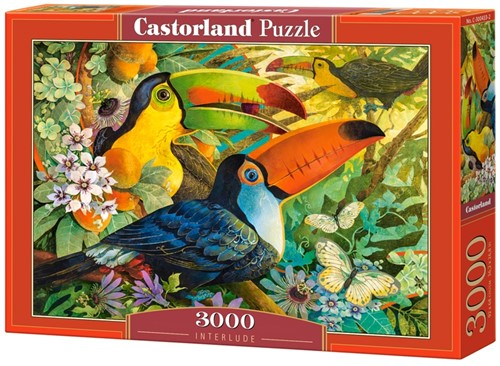 Interlude Puzzel (3000 stukjes)