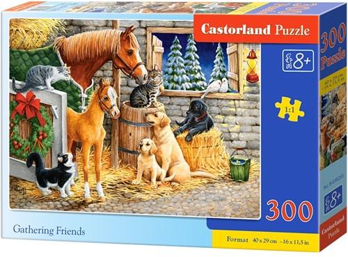 Gathering friends Puzzel (300 stukjes)