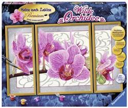 Schilderen Op Nummer - Wilde Orchidee