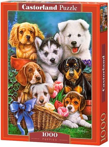 Puppies Puzzel (1000 stukjes)