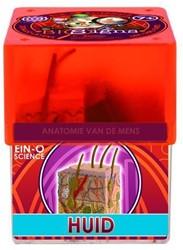 Ein-O Science Anatomie van de mens Huid