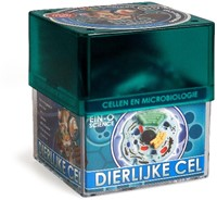 Ein-O Science Cellen en Microbiologie Dierlijke Cel-1