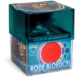 Ein-O Science Cellen en Microbiolgie Rode Bloedcel