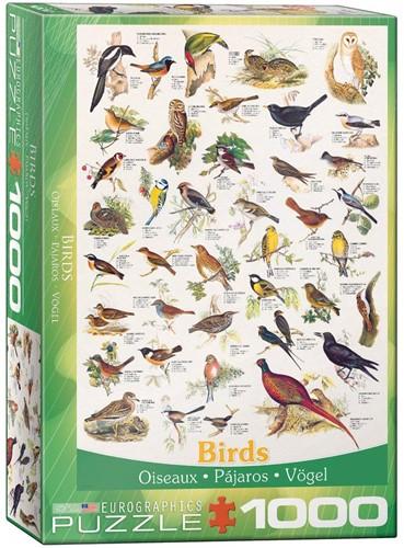 Birds Puzzel (1000 stukjes)
