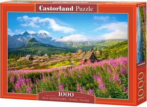 Hala Gasienicowa,Tatras Puzzel (1000 stukjes)