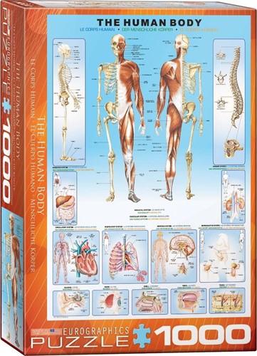 The Human Body Puzzel (1000 stukjes)