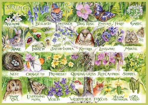 Woodland Seasons Puzzel