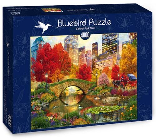 Central Park NYC Puzzel (4000 stukjes)
