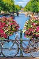 Hollands Mooiste! - Kleurrijke Gracht Puzzel (500 stukjes)-2