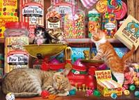 Paw Drops & Sugar Mice - Steve Read Puzzel (500 XL stukjes)