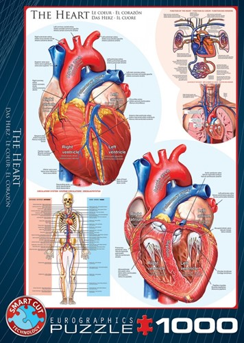 The Heart Puzzel (1000 stukjes)