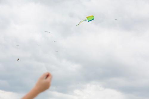 Vlieger to Go-2