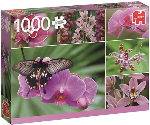 Orchideeën Puzzel (1000 stukjes)