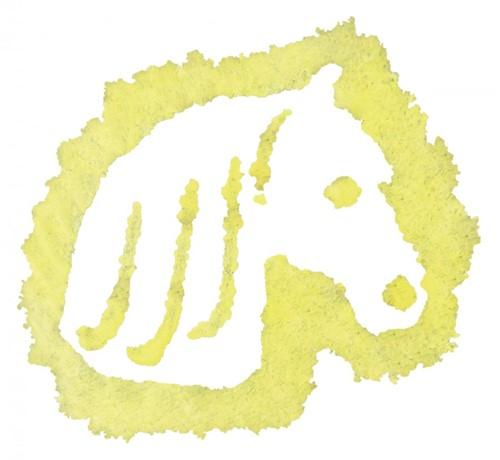 Outdoor Painting - Vloeibaar krijt - Paard-2