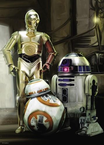 Star Wars - C3PO, R2D2 & BB8 Puzzel (1000 stukjes)-2
