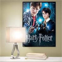 Wrebbit Poster Puzzel - Harry Potter (500 stukjes)-3