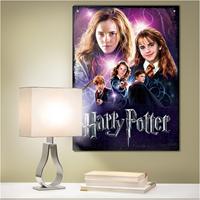 Wrebbit Poster Puzzel - Harry Potter Hermione Granger (500 stukjes)